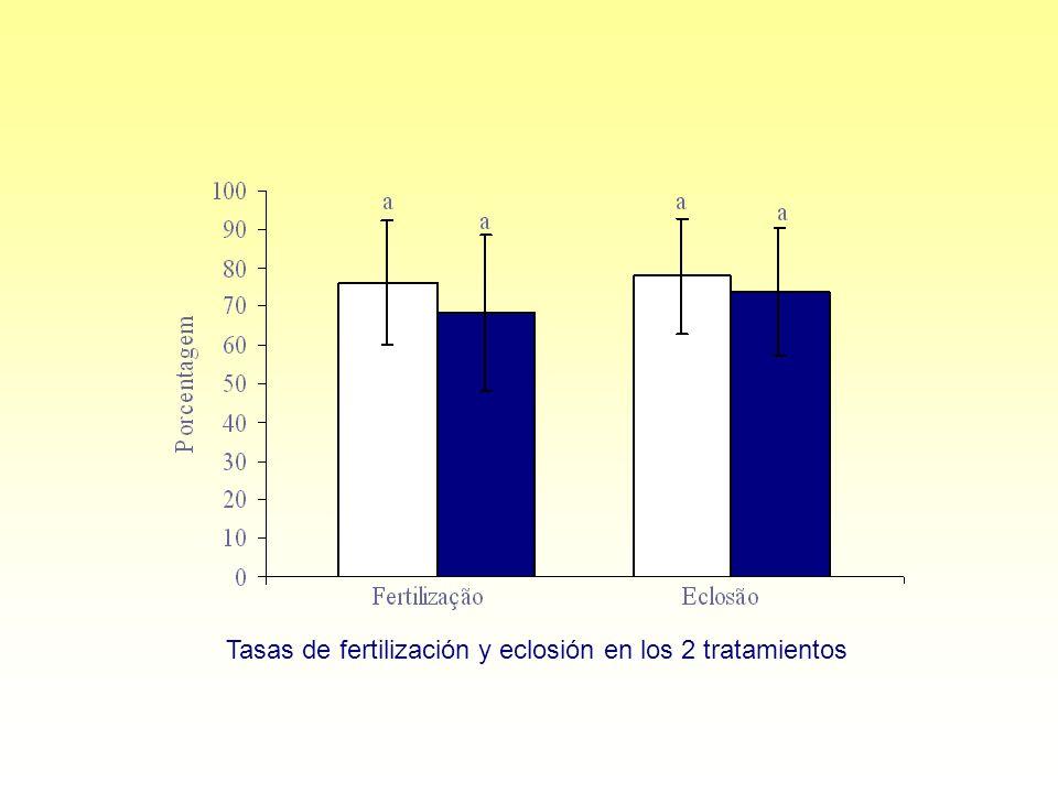 Tasas de fertilización y eclosión en los 2 tratamientos