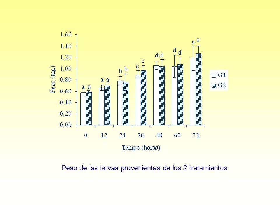 Peso de las larvas provenientes de los 2 tratamientos