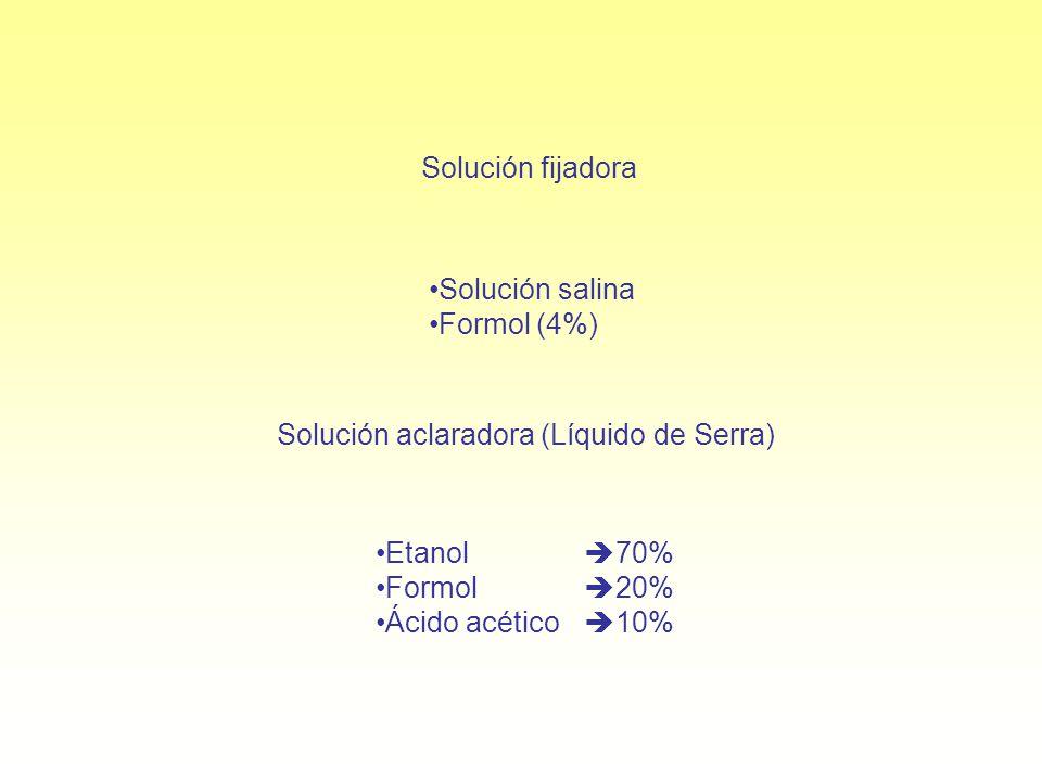 Solución fijadora Solución salina Formol (4%) Solución aclaradora (Líquido de Serra) Etanol 70% Formol 20% Ácido acético 10%
