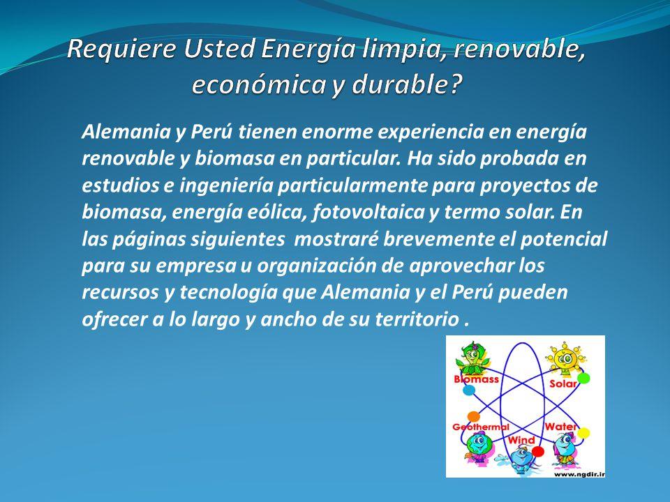 Alemania y Perú tienen enorme experiencia en energía renovable y biomasa en particular. Ha sido probada en estudios e ingeniería particularmente para