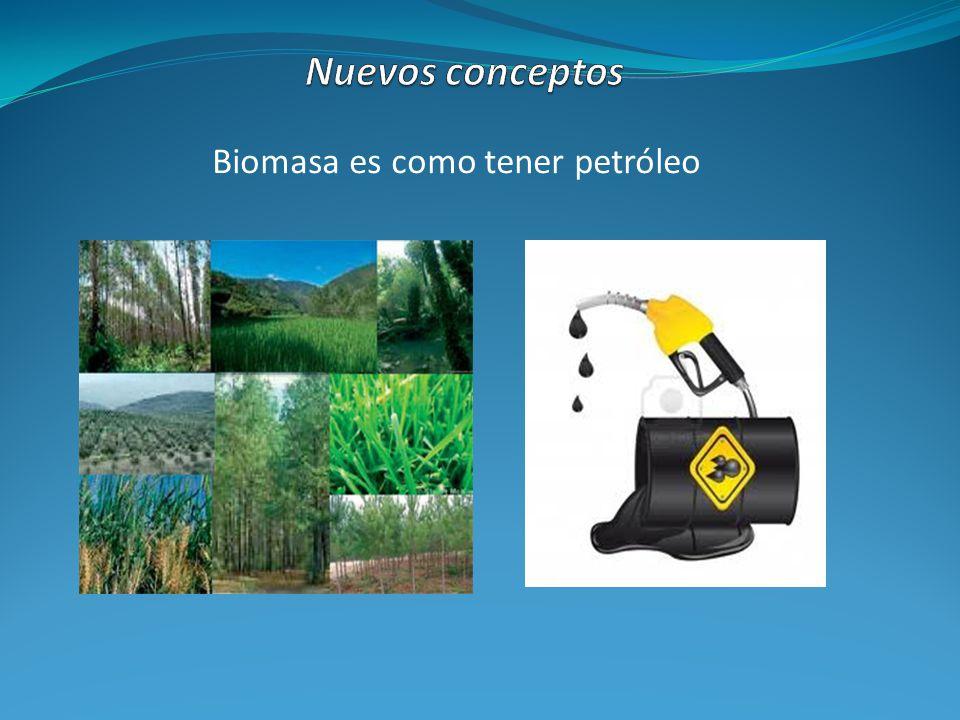 Biomasa es como tener petróleo
