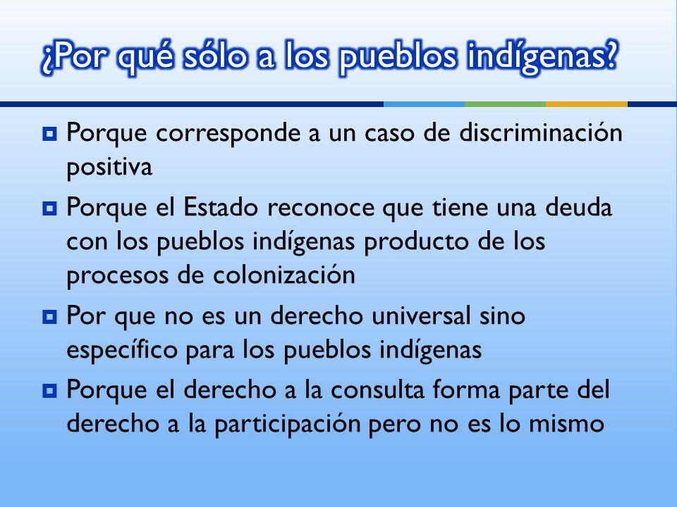 Porque corresponde a un caso de discriminación positiva Porque el Estado reconoce que tiene una deuda con los pueblos indígenas producto de los proces