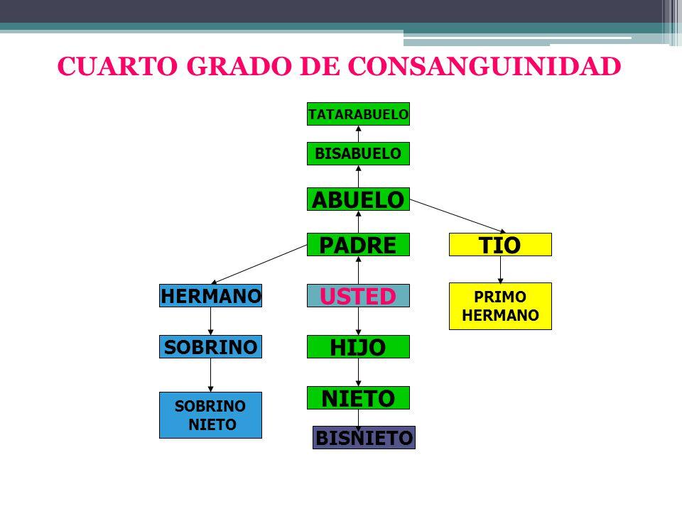 CUARTO GRADO DE CONSANGUINIDAD PADRE ABUELO BISABUELO USTED PRIMO HERMANO TIO HIJO NIETO HERMANO SOBRINO NIETO TATARABUELO BISNIETO