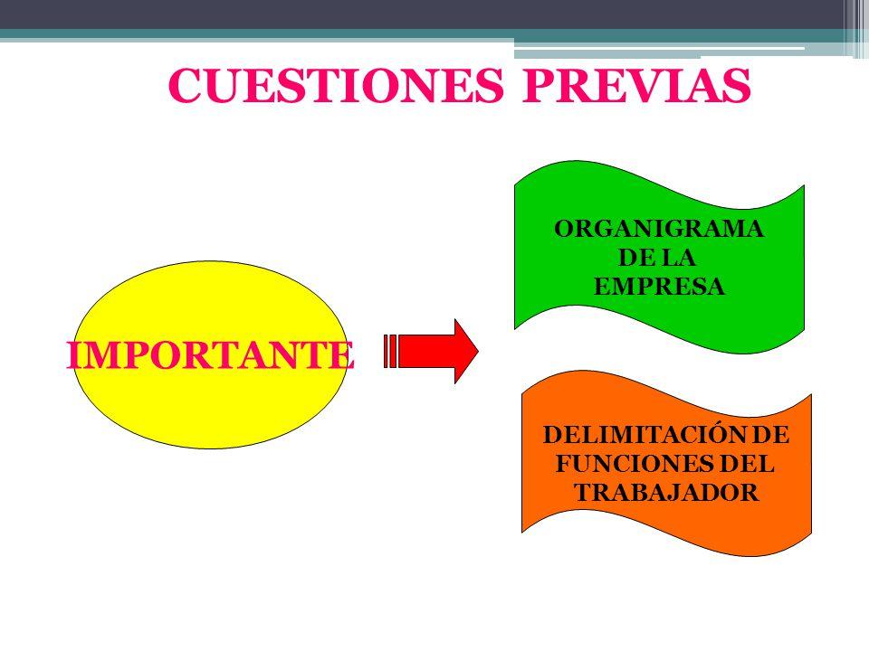 CUESTIONES PREVIAS IMPORTANTE ORGANIGRAMA DE LA EMPRESA DELIMITACIÓN DE FUNCIONES DEL TRABAJADOR