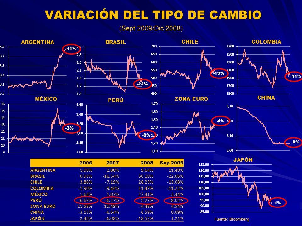 VARIACIÓN DEL TIPO DE CAMBIO (Sept 2009/Dic 2008) 200620072008Sep 2009 ARGENTINA1.09%2.88%9.64%11.49% BRASIL0.93%-16.54%30.10%-22.06% CHILE3.86%-7.19%