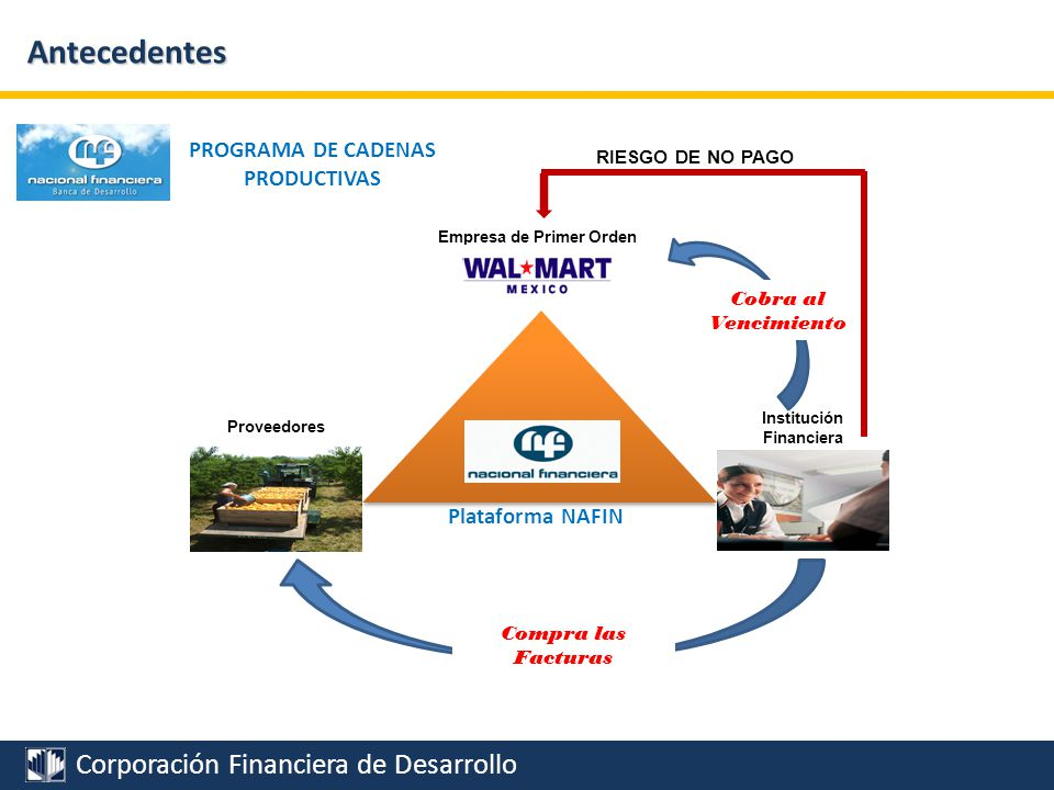 Corporación Financiera de Desarrollo Antecedentes Plataforma NAFIN RESULTADOS PROGRAMA DE CADENAS PRODUCTIVAS