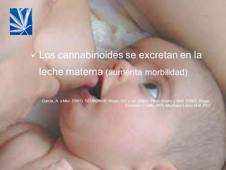 Los cannabinoides se excretan en la leche materna (aumenta morbilidad) García, A. y Mur, (1991). SEDRONAR. Briggs, GG y col. (2005).Pérez-Reyes y Wall