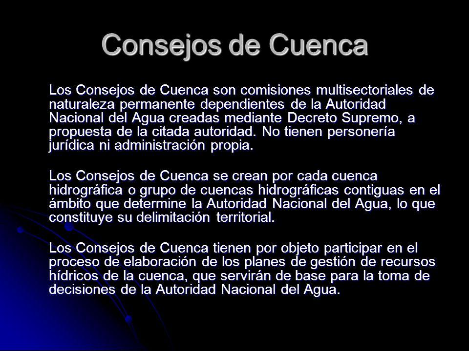 Consejos de Cuenca Los Consejos de Cuenca son comisiones multisectoriales de naturaleza permanente dependientes de la Autoridad Nacional del Agua crea