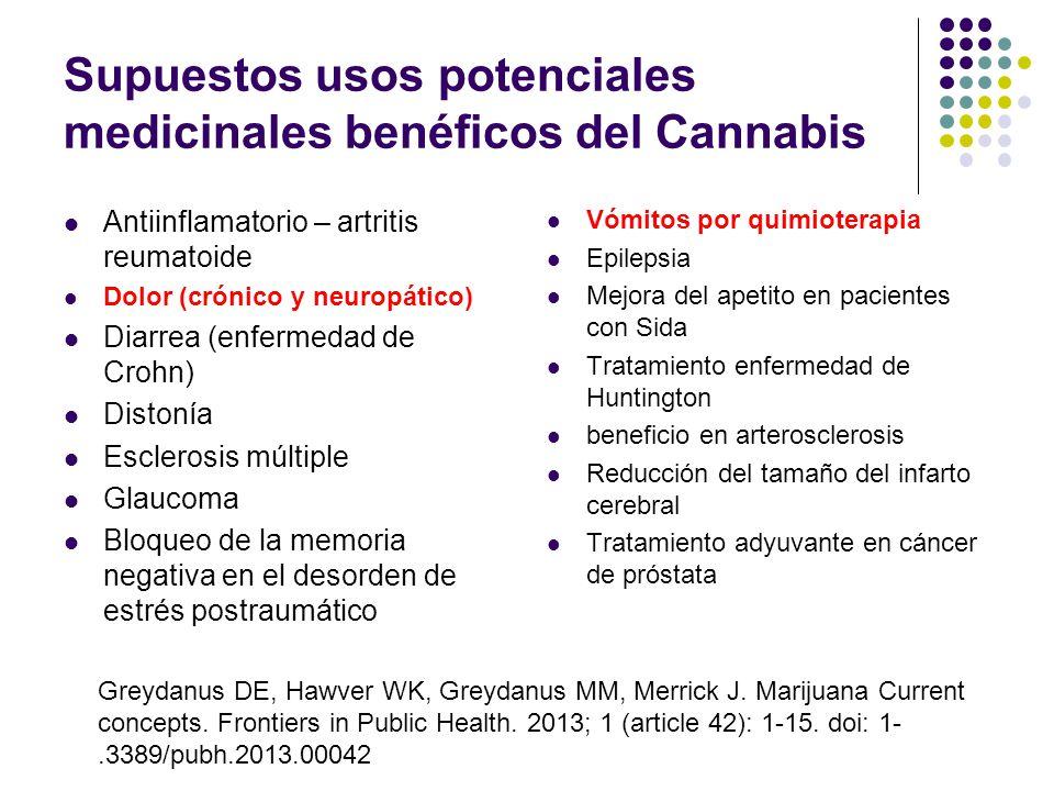 Se publicita el uso medicinal de la marihuana ¿Puede fumarse marihuana para fines medicinales o terapéuticos? ¿Se ha liberalizado el uso de la marihua
