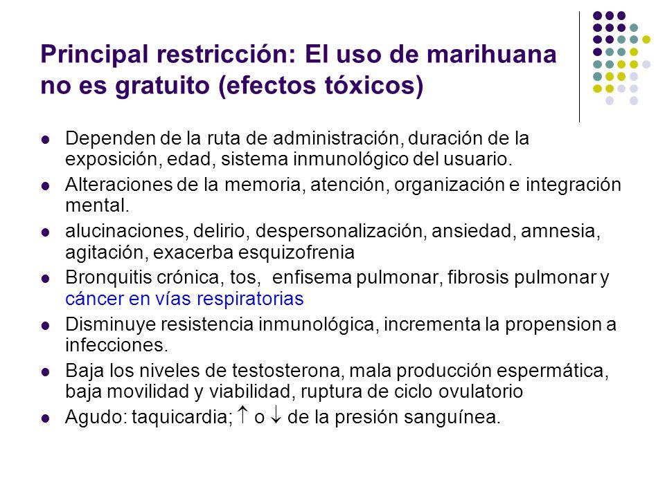 Principal restricción: El uso de marihuana no es gratuito (efectos tóxicos) Cancer (principalmente del pulmon) Transtornos reproductivos (hombres y mu