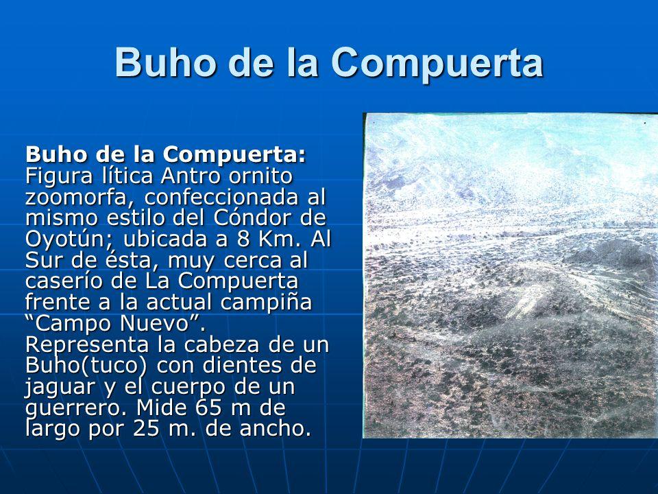 Buho de la Compuerta Buho de la Compuerta: Figura lítica Antro ornito zoomorfa, confeccionada al mismo estilo del Cóndor de Oyotún; ubicada a 8 Km. Al