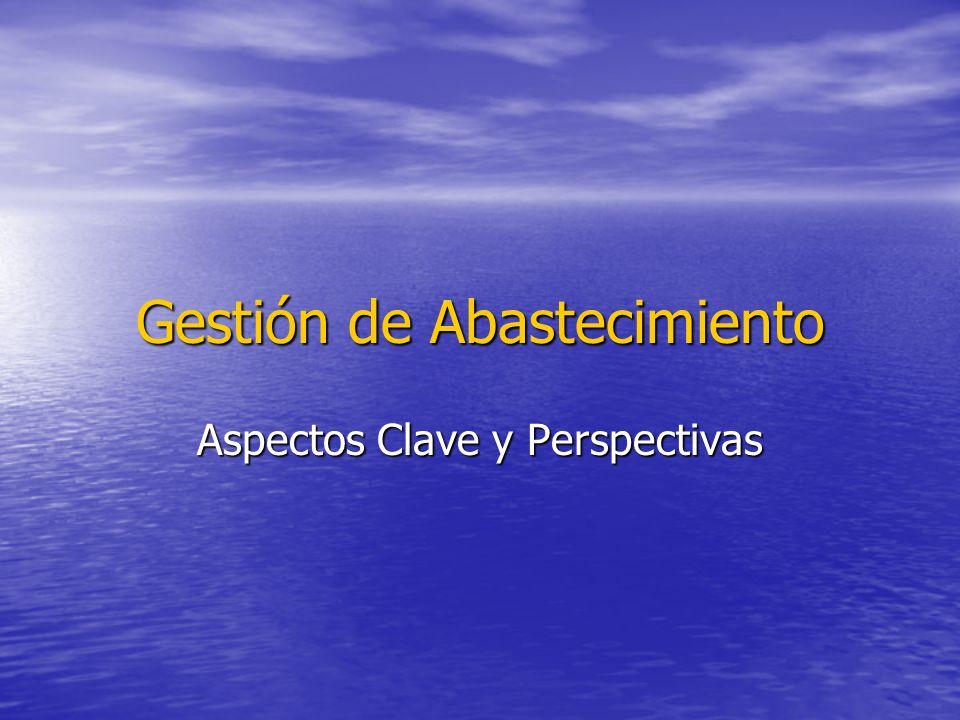 Gestión de Abastecimiento Aspectos Clave y Perspectivas