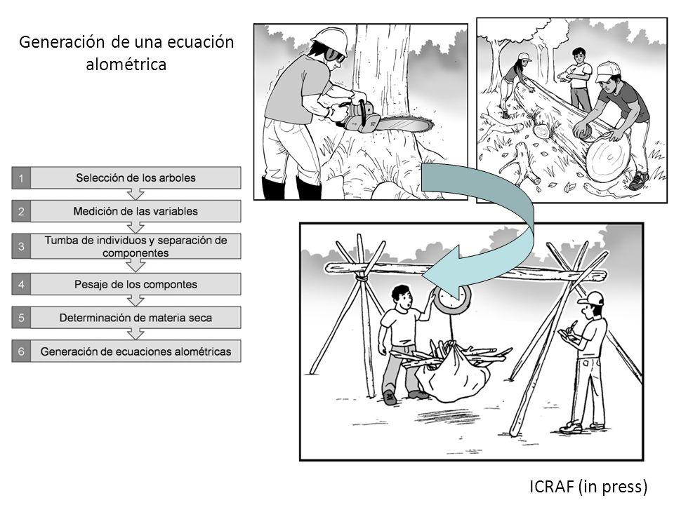ICRAF (in press) Generación de una ecuación alométrica