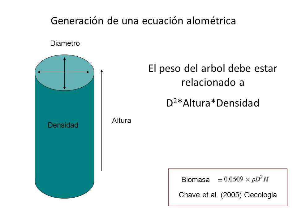 Generación de una ecuación alométrica Altura Diametro Densidad El peso del arbol debe estar relacionado a D 2 *Altura*Densidad Chave et al. (2005) Oec