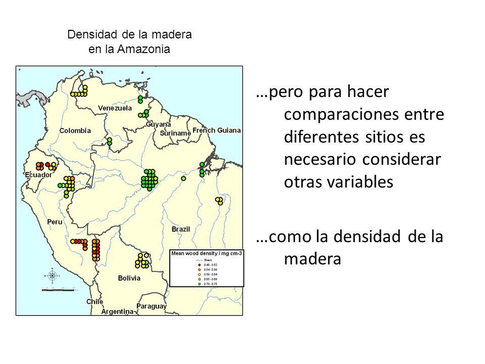 Zanne et al.(2009) Global Wood density database http://htl.handle.net/10255/dryad.235.