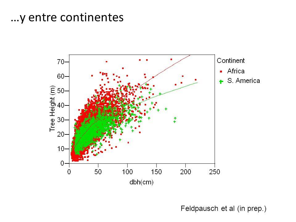 Conclusiones 1.Las ecuaciones alométricas relacionan variables estructurales, que podemos medir fácilmente, con el peso (biomasa) de un árbol 2.Las ecuaciones de Chave nos permiten calcular el biomasa de los árboles en nuestras parcelas en una forma comparable con otros estudios 3.Aun hay la necesidad comprobar estas ecuaciones en el Peru