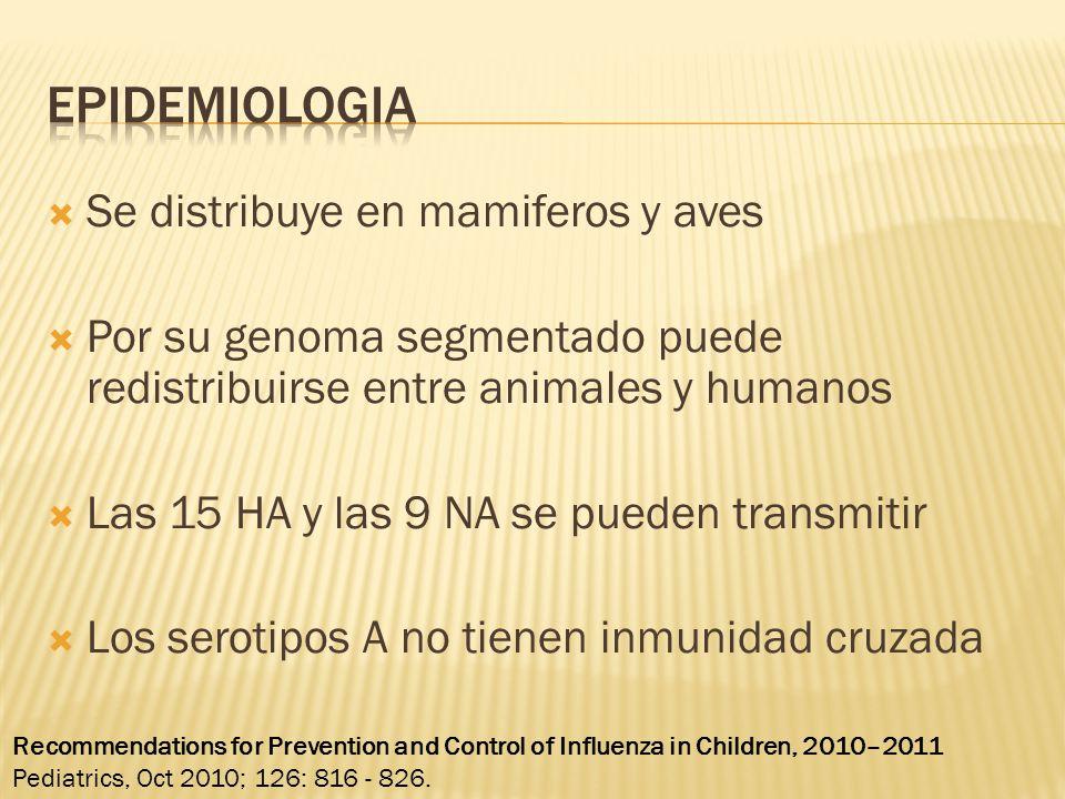 Se distribuye en mamiferos y aves Por su genoma segmentado puede redistribuirse entre animales y humanos Las 15 HA y las 9 NA se pueden transmitir Los serotipos A no tienen inmunidad cruzada Recommendations for Prevention and Control of Influenza in Children, 2010–2011 Pediatrics, Oct 2010; 126: 816 - 826.