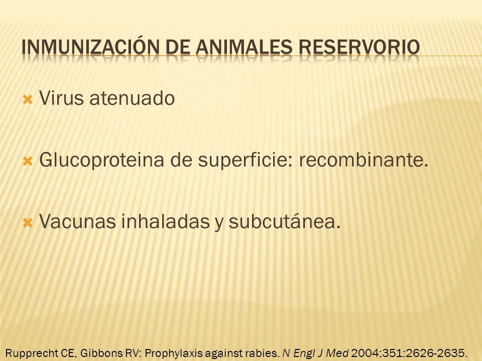 Virus atenuado Glucoproteina de superficie: recombinante. Vacunas inhaladas y subcutánea. Rupprecht CE, Gibbons RV: Prophylaxis against rabies. N Engl
