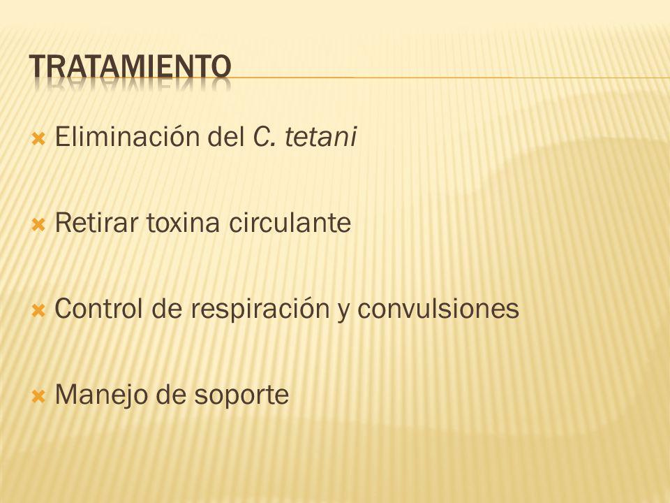 Eliminación del C. tetani Retirar toxina circulante Control de respiración y convulsiones Manejo de soporte