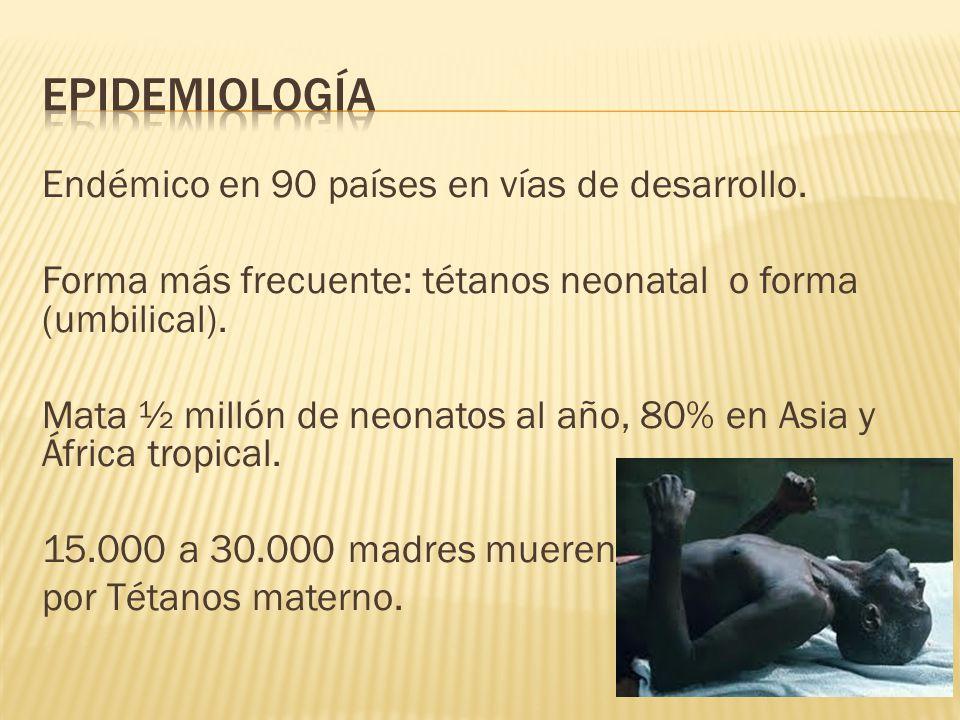Endémico en 90 países en vías de desarrollo. Forma más frecuente: tétanos neonatal o forma (umbilical). Mata ½ millón de neonatos al año, 80% en Asia
