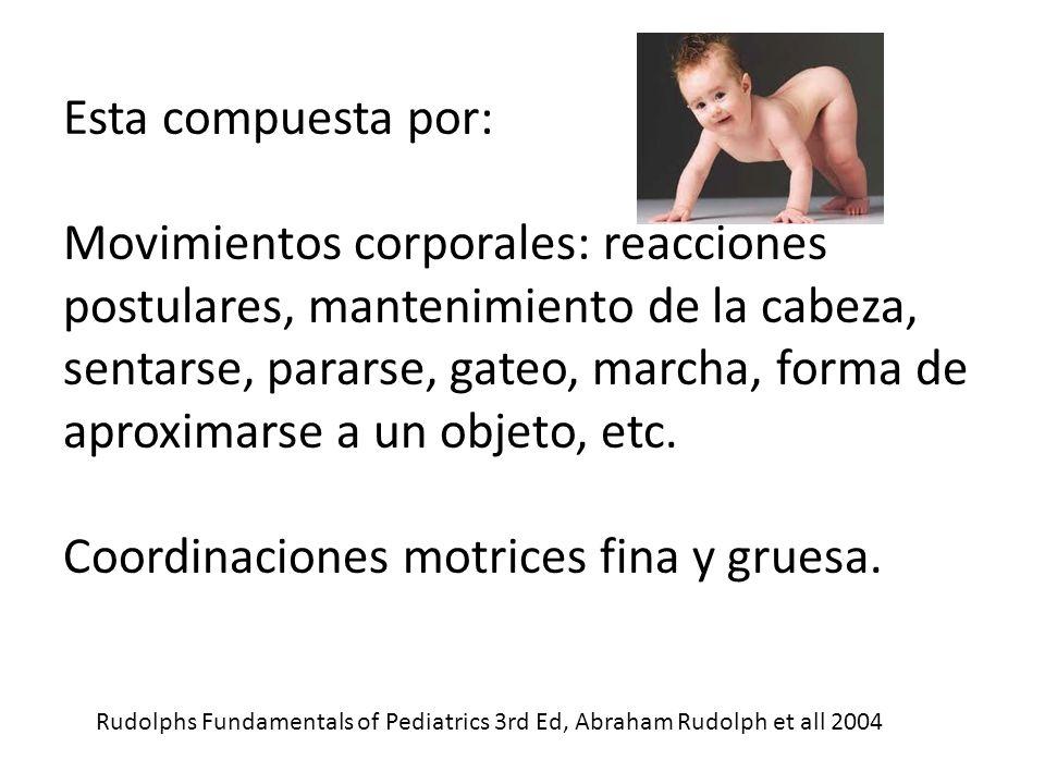 Esta compuesta por: Movimientos corporales: reacciones postulares, mantenimiento de la cabeza, sentarse, pararse, gateo, marcha, forma de aproximarse