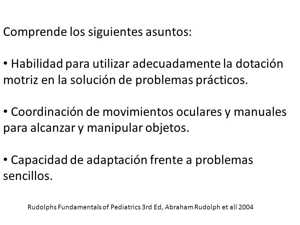 Comprende los siguientes asuntos: Habilidad para utilizar adecuadamente la dotación motriz en la solución de problemas prácticos.