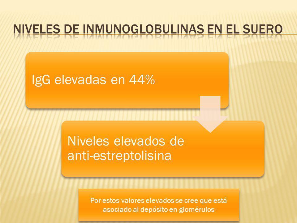 IgG elevadas en 44% Niveles elevados de anti-estreptolisina Por estos valores elevados se cree que está asociado al depósito en glomérulos