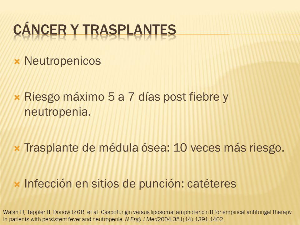 Neutropenicos Riesgo máximo 5 a 7 días post fiebre y neutropenia.