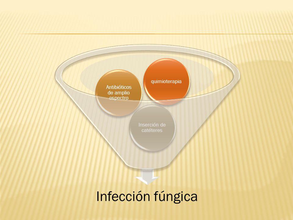 Infección fúngica Inserción de catéteres Antibióticos de amplio espectro quimioterapia