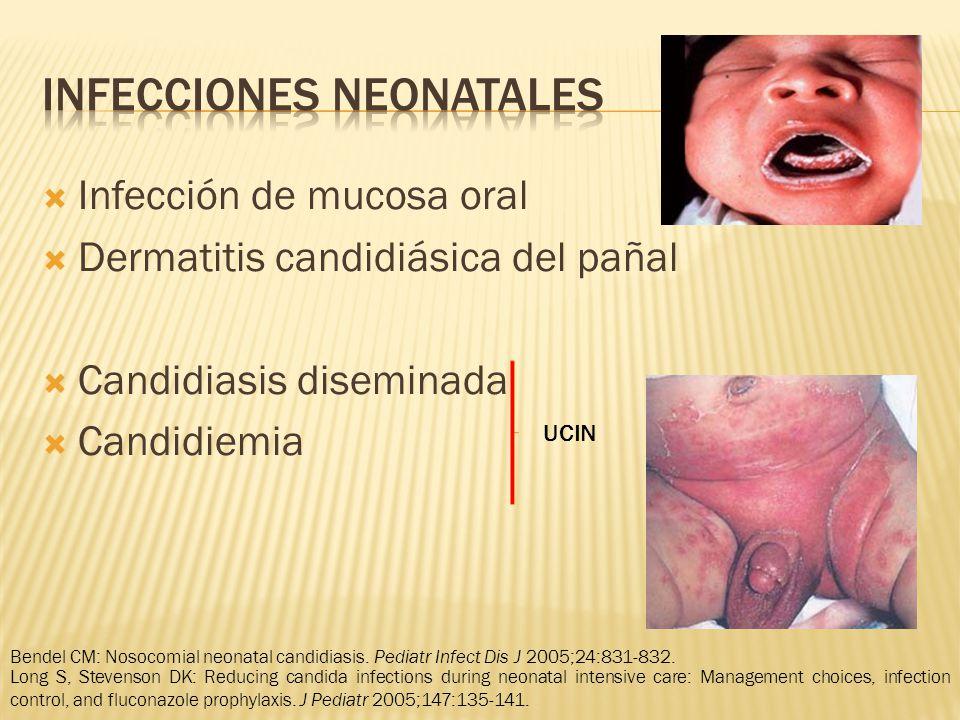 Infección de mucosa oral Dermatitis candidiásica del pañal Candidiasis diseminada Candidiemia UCIN Bendel CM: Nosocomial neonatal candidiasis.