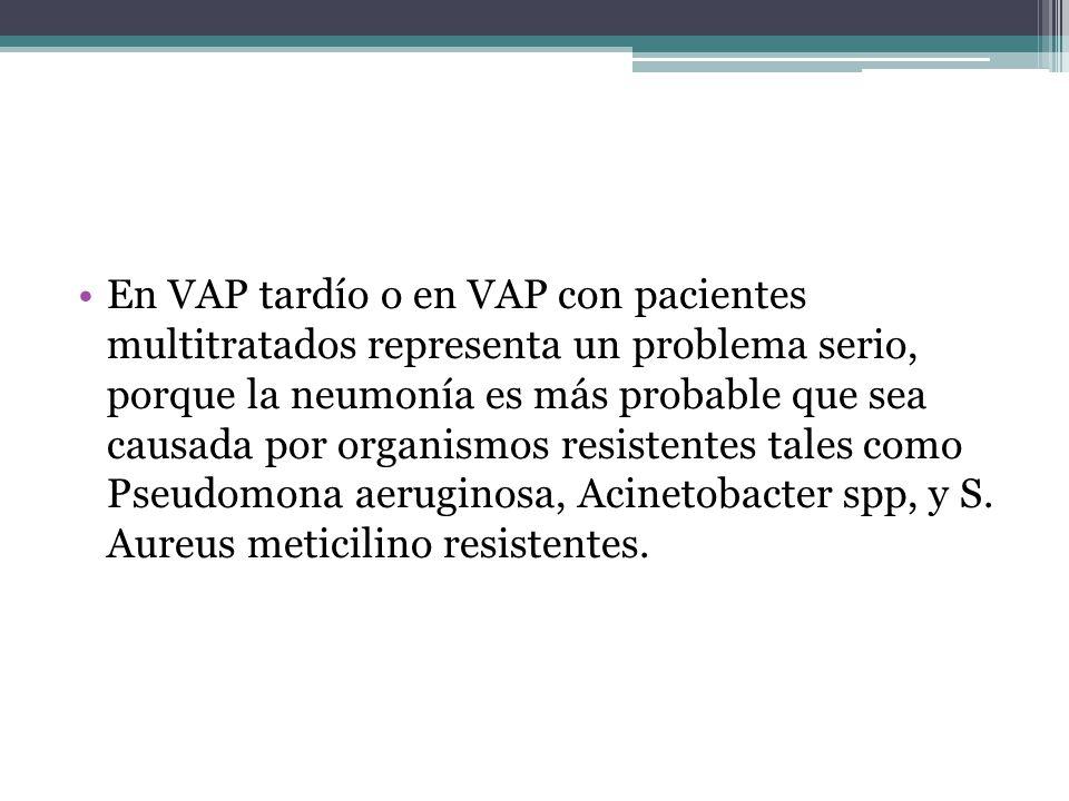 En VAP tardío o en VAP con pacientes multitratados representa un problema serio, porque la neumonía es más probable que sea causada por organismos resistentes tales como Pseudomona aeruginosa, Acinetobacter spp, y S.