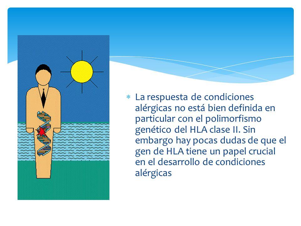 La respuesta de condiciones alérgicas no está bien definida en particular con el polimorfismo genético del HLA clase II. Sin embargo hay pocas dudas d