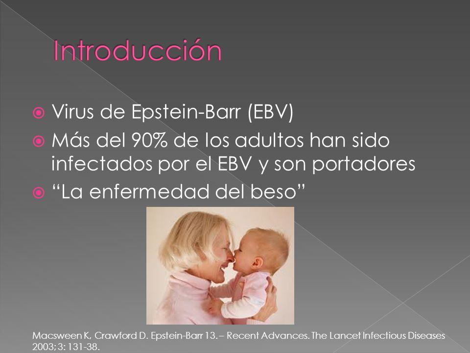 Virus de Epstein-Barr (EBV) Más del 90% de los adultos han sido infectados por el EBV y son portadores La enfermedad del beso Macsween K, Crawford D.