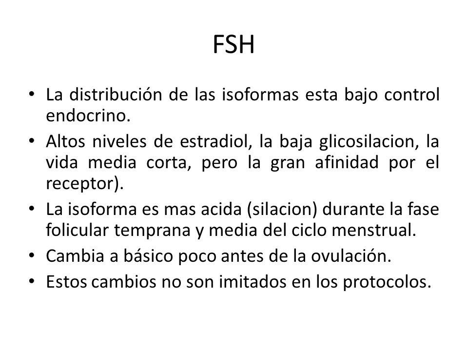 FSH La distribución de las isoformas esta bajo control endocrino. Altos niveles de estradiol, la baja glicosilacion, la vida media corta, pero la gran
