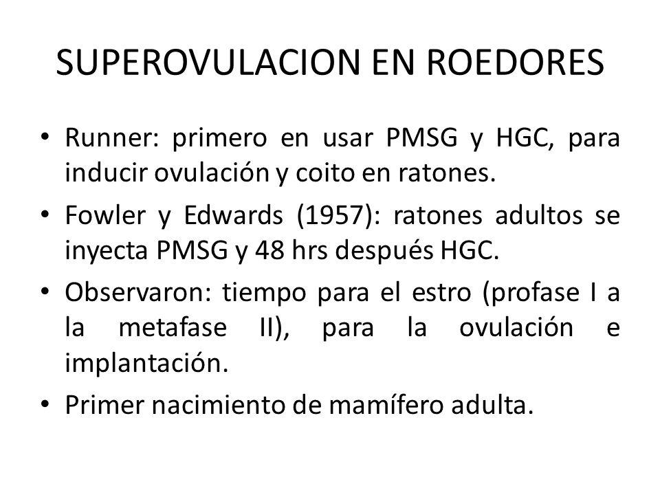 SUPEROVULACION EN ROEDORES Runner: primero en usar PMSG y HGC, para inducir ovulación y coito en ratones. Fowler y Edwards (1957): ratones adultos se