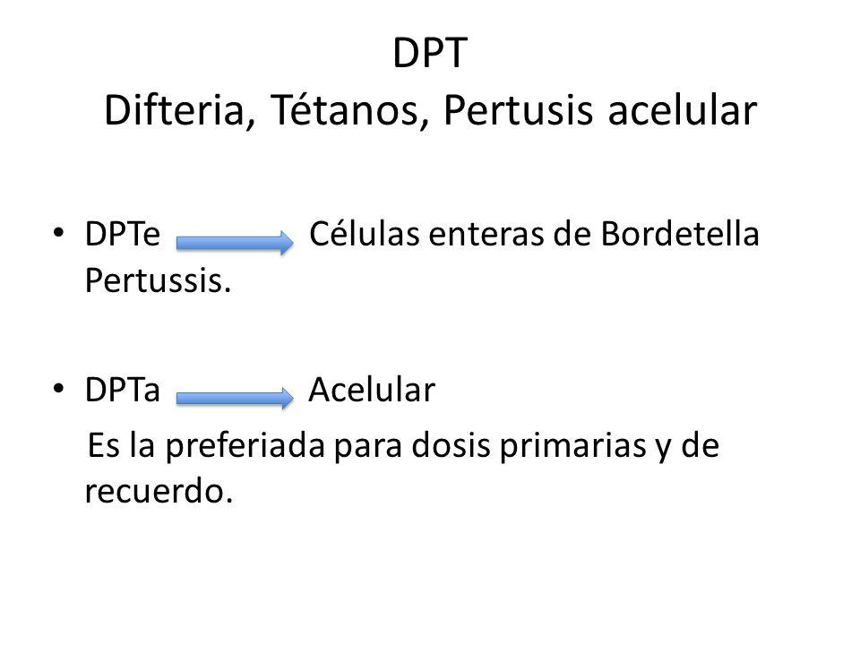 Las series primarias consisten n 3 dosis de DPTa separadas por intervalos de 4 a 8 semanas Comienza entre las semanas 6 y los 3 meses de edad ( 2, 4 y 6 meses) 4ta dosis entre los 6 meses y el año de edad.