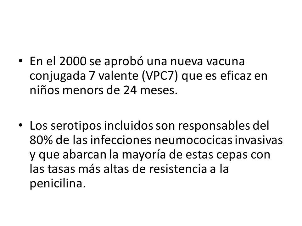 SARAMPIÓN, PAROTIDITIS Y RUBÉOLA La SPR combina tres virus atenuados.