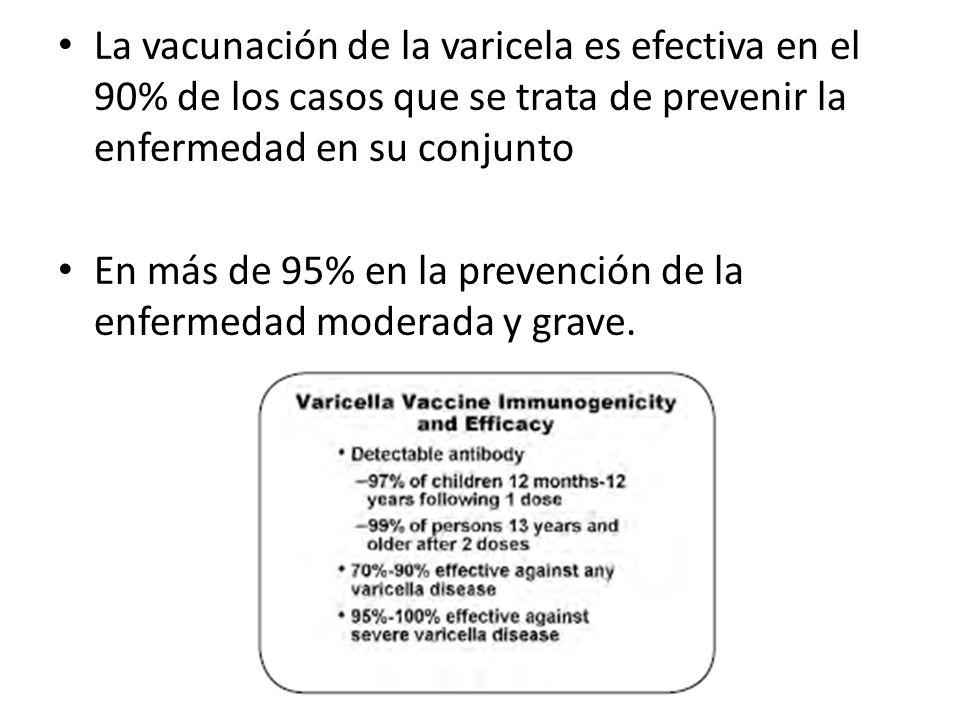 Efectos Secundarios Son pocos, pero de mayor importancia: Erupción cutánea variceliforme entre 3 a 6%