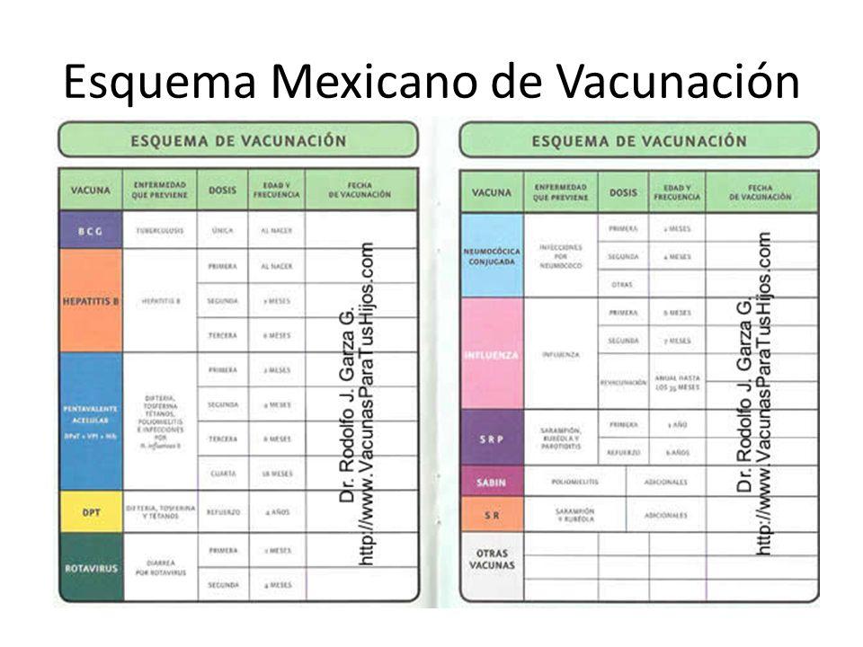 Esquema Mexicano de Vacunación