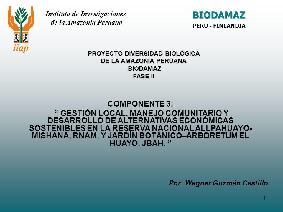 1 PROYECTO DIVERSIDAD BIOLÓGICA DE LA AMAZONIA PERUANA BIODAMAZ FASE II COMPONENTE 3: GESTIÓN LOCAL, MANEJO COMUNITARIO Y DESARROLLO DE ALTERNATIVAS E