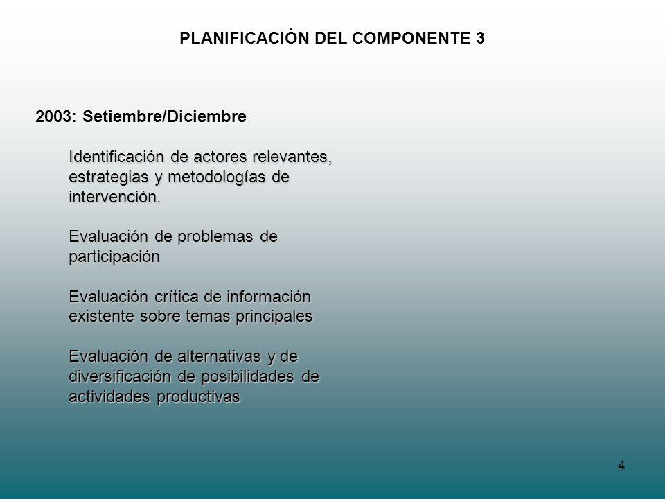 4 PLANIFICACIÓN DEL COMPONENTE 3 2003: Setiembre/Diciembre Identificación de actores relevantes, estrategias y metodologías de intervención. Evaluació