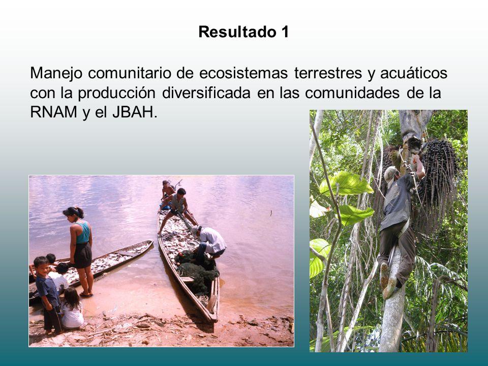 6 Resultado 1 Manejo comunitario de ecosistemas terrestres y acuáticos con la producción diversificada en las comunidades de la RNAM y el JBAH.