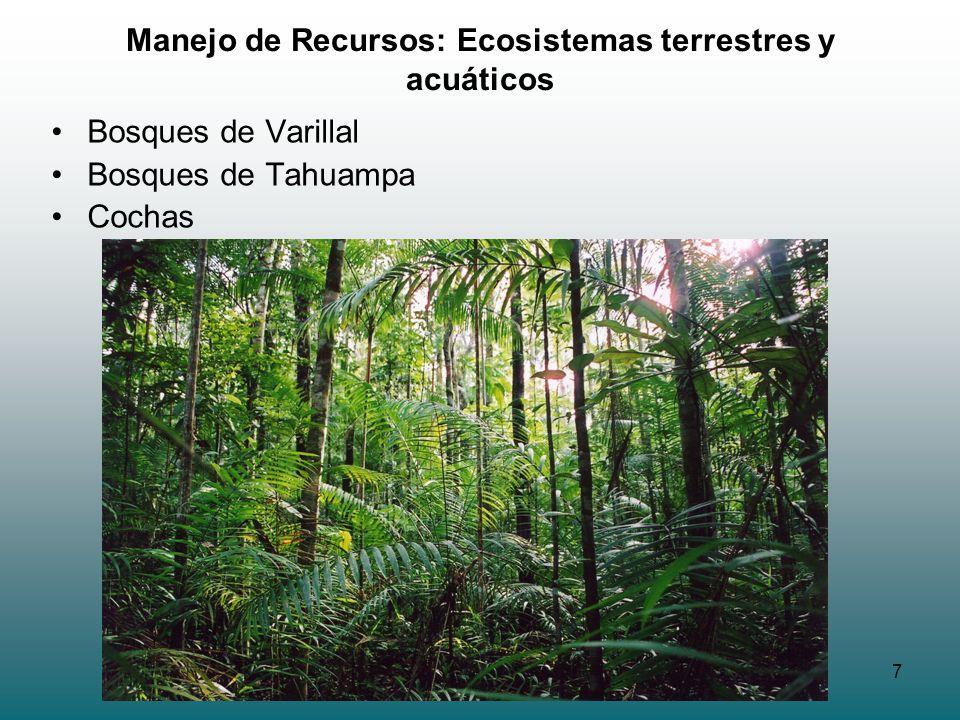 7 Manejo de Recursos: Ecosistemas terrestres y acuáticos Bosques de Varillal Bosques de Tahuampa Cochas