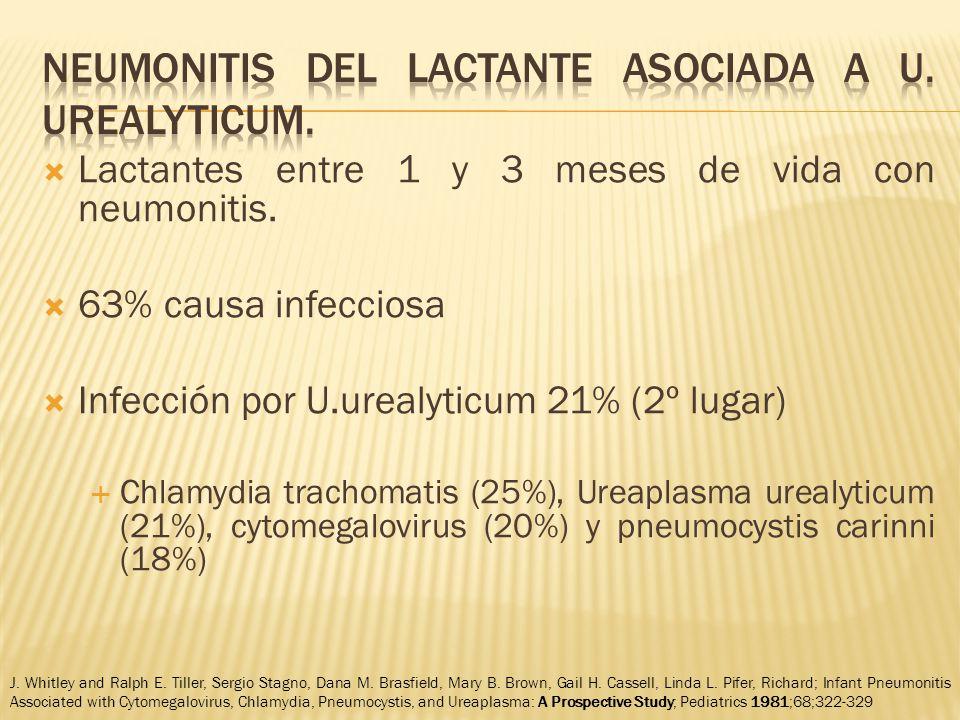 Lactantes entre 1 y 3 meses de vida con neumonitis.