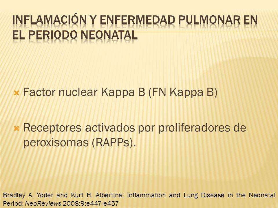 Factor nuclear Kappa B (FN Kappa B) Receptores activados por proliferadores de peroxisomas (RAPPs).