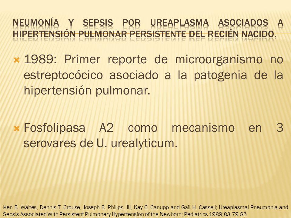 1989: Primer reporte de microorganismo no estreptocócico asociado a la patogenia de la hipertensión pulmonar.