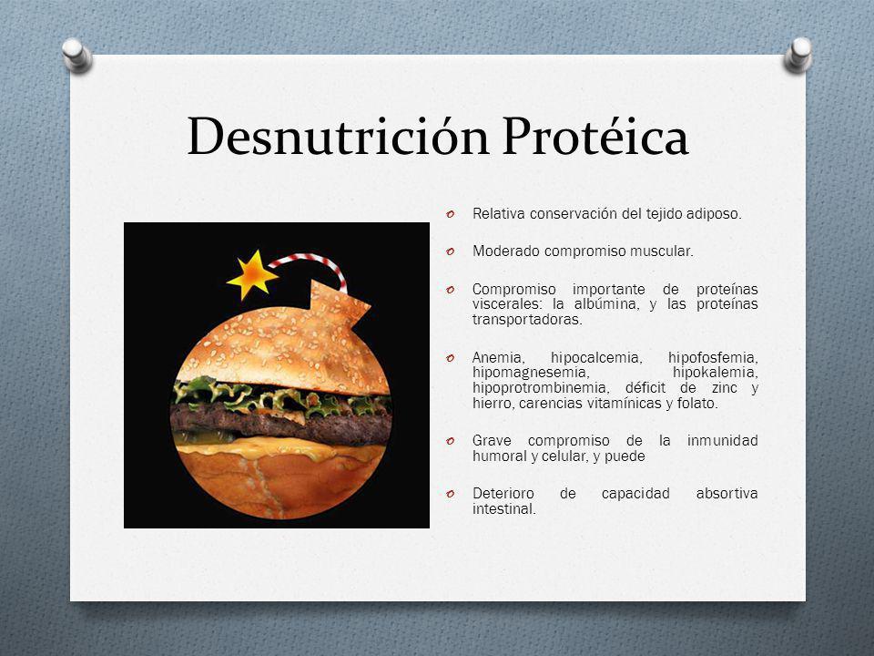 Desnutrición Protéica o Relativa conservación del tejido adiposo. o Moderado compromiso muscular. o Compromiso importante de proteínas viscerales: la