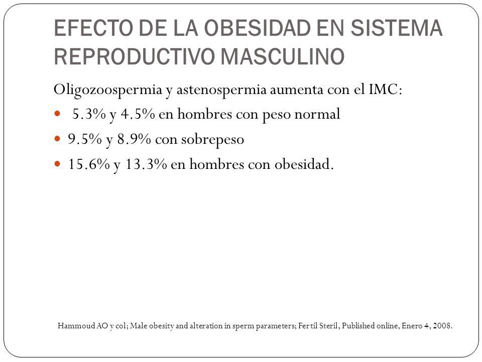 EFECTO DE LA OBESIDAD EN SISTEMA REPRODUCTIVO MASCULINO Oligozoospermia y astenospermia aumenta con el IMC: 5.3% y 4.5% en hombres con peso normal 9.5