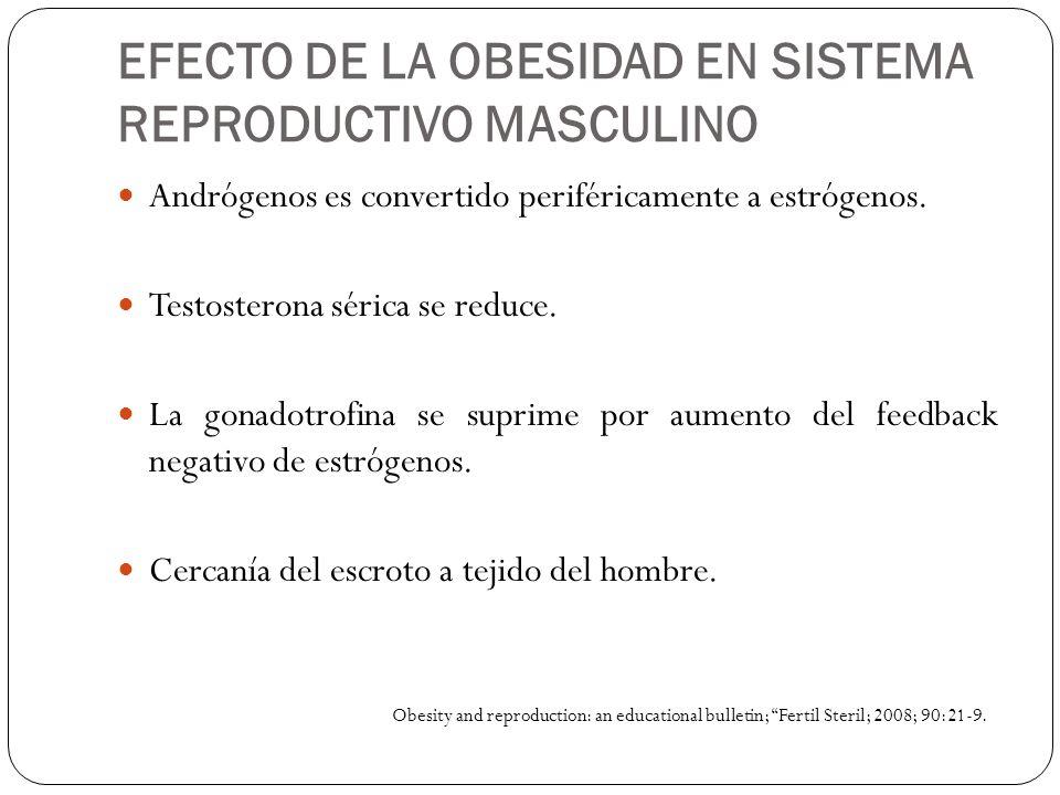 EFECTO DE LA OBESIDAD EN SISTEMA REPRODUCTIVO MASCULINO Andrógenos es convertido periféricamente a estrógenos. Testosterona sérica se reduce. La gonad