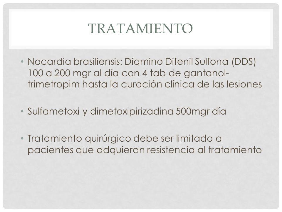 TRATAMIENTO Nocardia brasiliensis: Diamino Difenil Sulfona (DDS) 100 a 200 mgr al día con 4 tab de gantanol- trimetropim hasta la curación clínica de